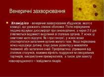 Венеричні захворювання Хламідіоз - венеричне захворювання збудником, якого є ...