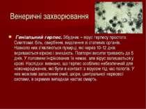 Венеричні захворювання Геніальний герпес. Збудник – вірус герпесу простого. С...