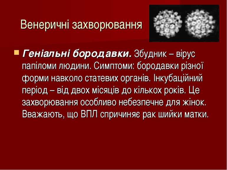 Венеричні захворювання Геніальні бородавки. Збудник – вірус папіломи людини. ...