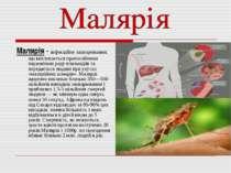 Малярія - інфекційне захворювання, що викликається протозойними паразитами ро...