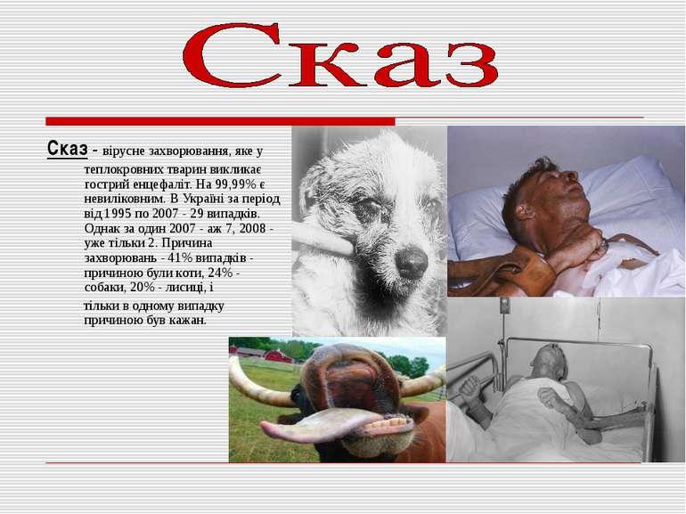 Сказ - вірусне захворювання, яке у теплокровних тварин викликає гострий енцеф...