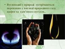 Вуглеводні у природі зустрічаються переважно у вигляді природного газу, нафти...