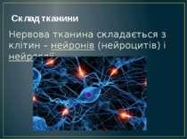 Склад тканини Нервова тканина складається з клітин – нейронів (нейроцитів) і ...