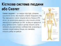Кісткова система людини або Скелет Скелет людини— це тверда структура, утвор...