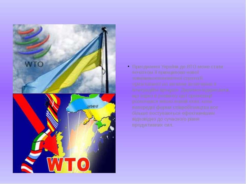 Приєднання України до ВТО може стати початком її принципово нової зовнішньоек...