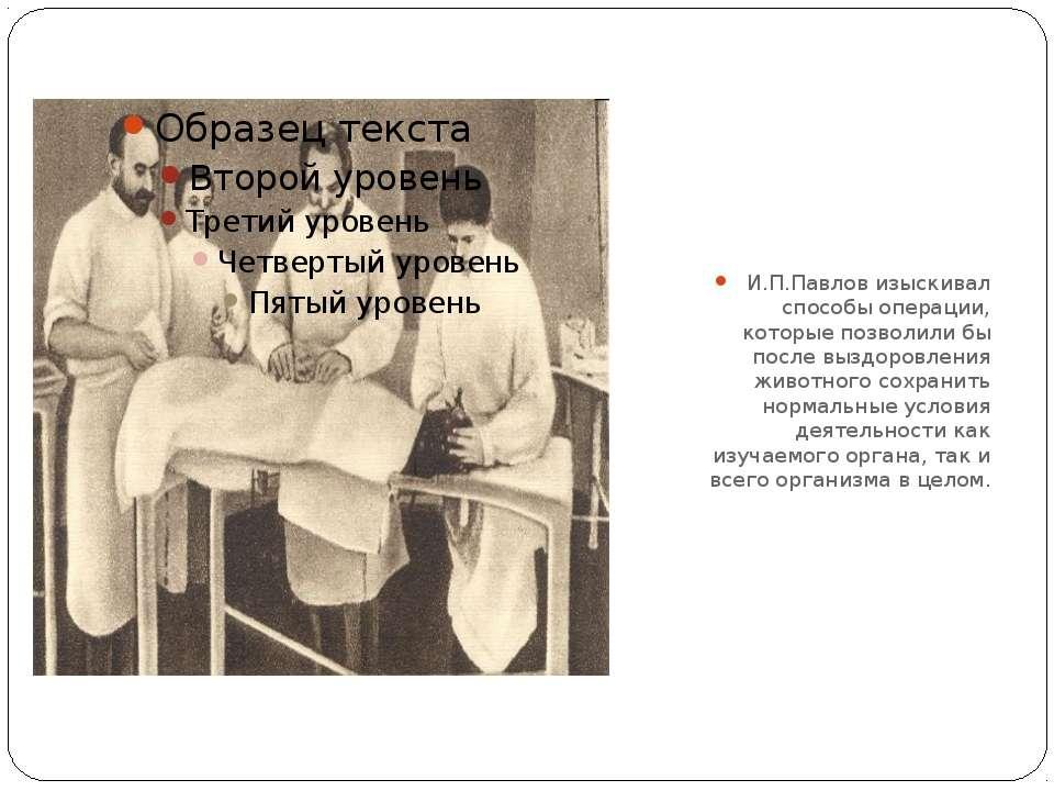 И.П.Павлов изыскивал способы операции, которые позволили бы после выздоровлен...