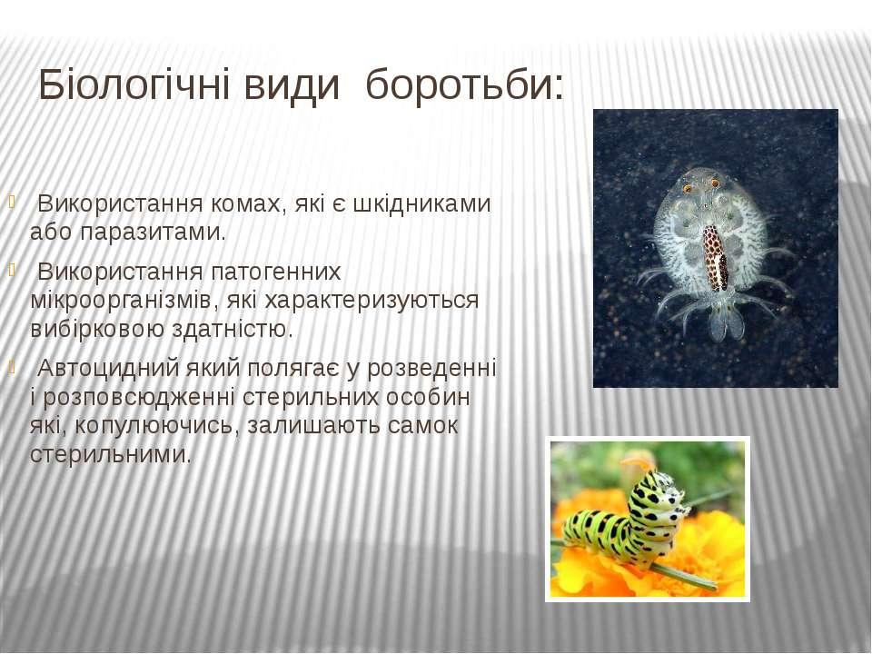 Біологічні види боротьби: Використання комах, які є шкідниками або паразитами...