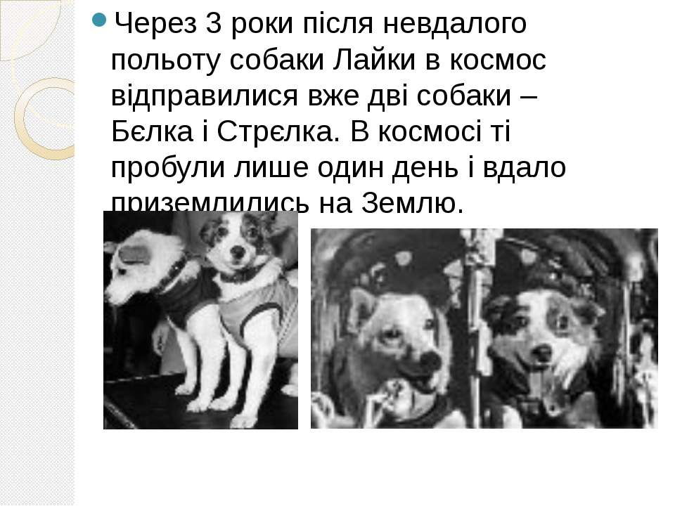 Через 3 роки після невдалого польоту собаки Лайки в космос відправилися вже д...