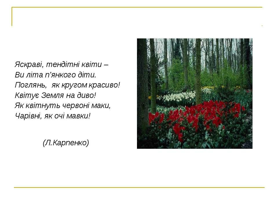 Яскраві, тендітні квіти – Ви літа п'янкого діти. Поглянь, як кругом красиво! ...