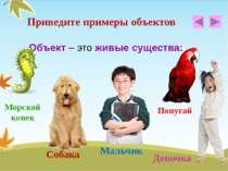 Объект – это живые существа: Приведите примеры объектов Морской конек Собака ...