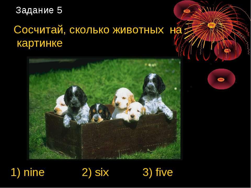 Задание 5 Сосчитай, сколько животных на картинке 1) nine 2) six 3) five