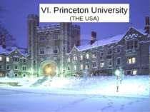 VI. Princeton University (THE USA)