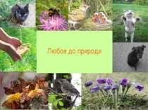 Любов до природи