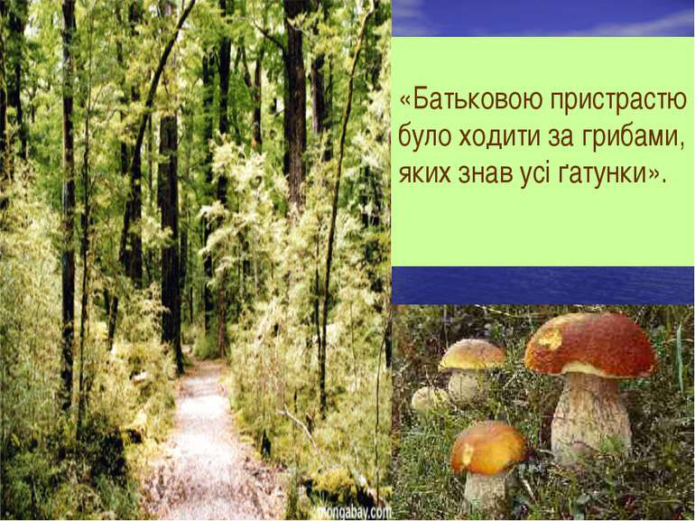 «Батьковою пристрастю було ходити за грибами, яких знав усі ґатунки».