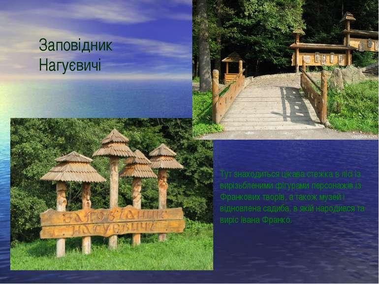 Заповідник Нагуєвичі Тут знаходиться цікава стежка в лісі із вирізьбленими фі...