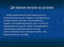 Дія важких металів на організм Окремі радіоактивні речовини концентруються в ...
