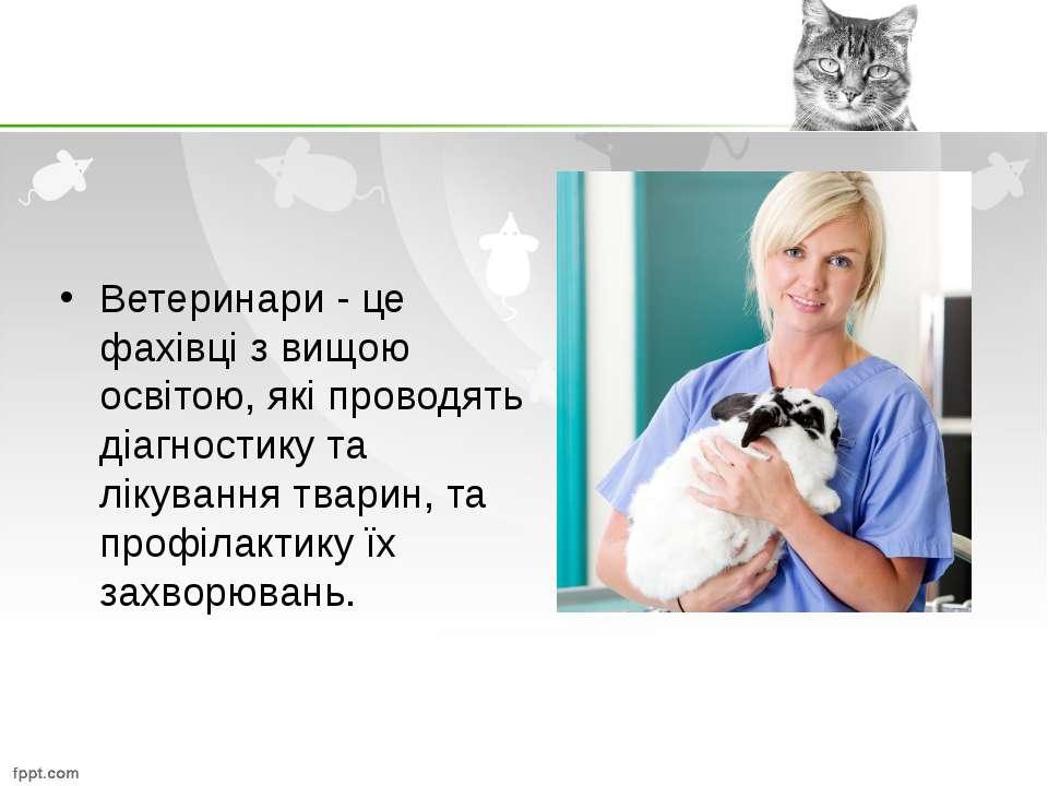 Ветеринари - це фахівці з вищою освітою, які проводять діагностику та лікуван...