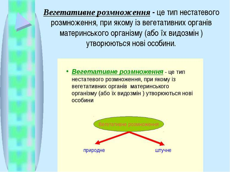 Вегетативне розмноження- це тип нестатевого розмноження, при якому із вегета...