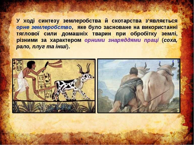 У ході синтезу землеробства й скотарства з'являється орне землеробство, яке б...