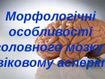 Морфологічні особливості головного мозку у віковому асперкті