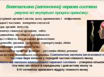 Вегетативна (автономна) нервова система регулює всі внутрішні процеси організ...