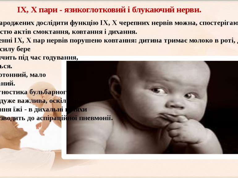 IX, X пари - язикоглотковий і блукаючий нерви. У новонароджених дослідити фун...