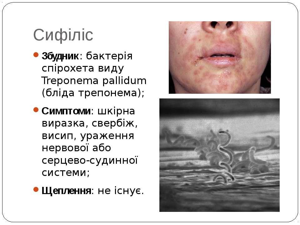 Сифіліс Збудник: бактерія спірохета виду Treponema pallidum (бліда трепонема)...