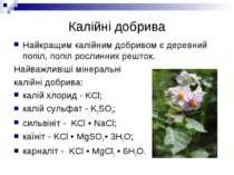 Калійні добрива Найкращим калійним добривом є деревний попіл, попіл рослинних...