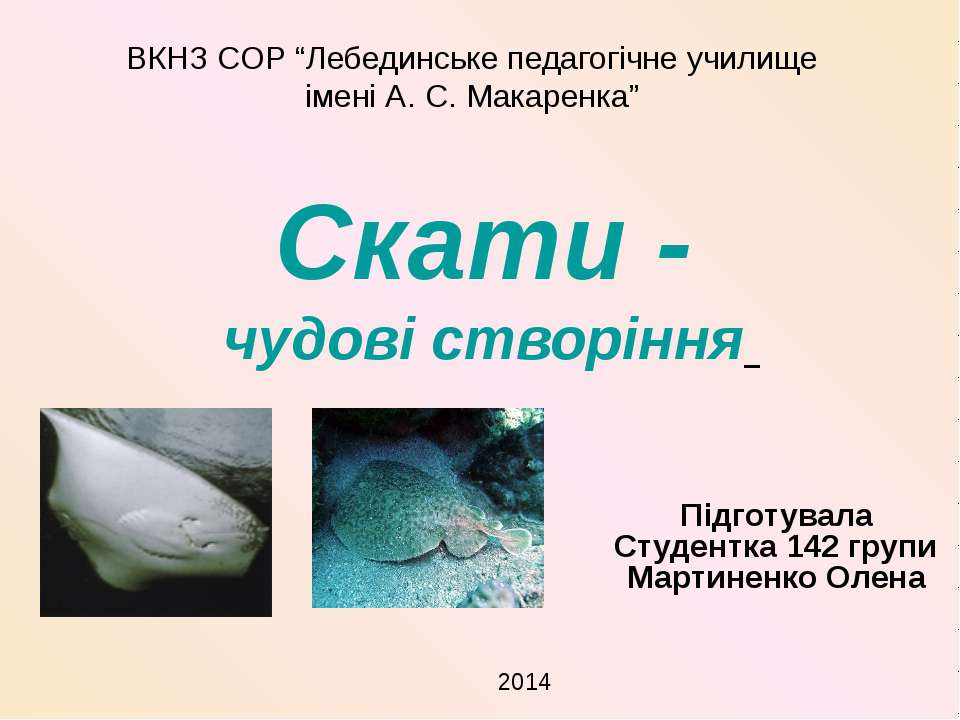 Cкати - чудові створіння Підготувала Студентка 142 групи Мартиненко Олена ВКН...