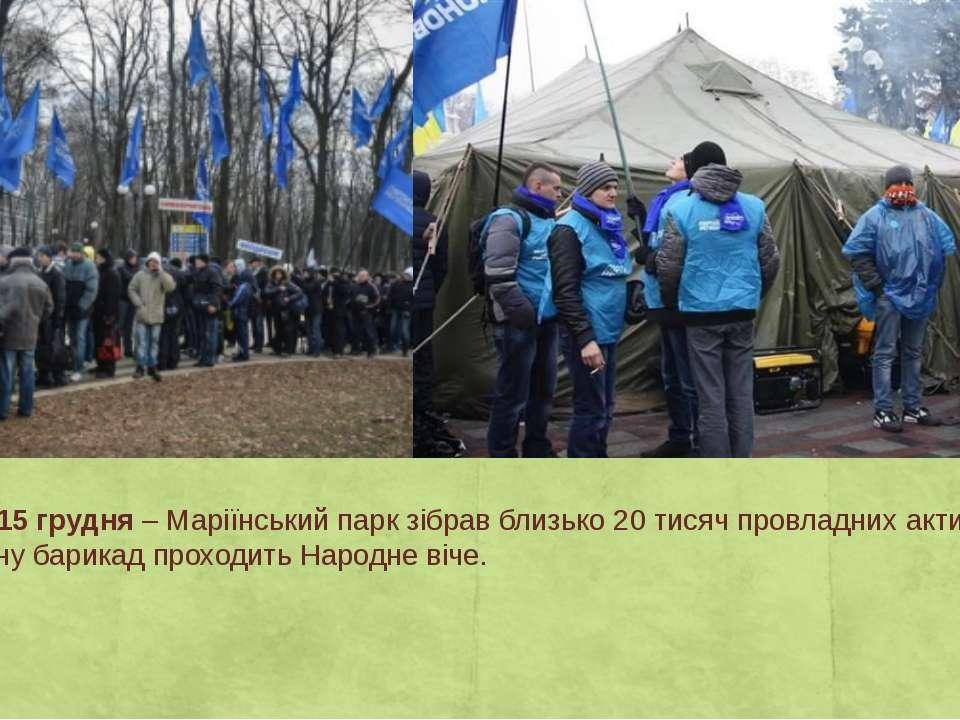 День 25 – 15 грудня– Маріїнський парк зібрав близько 20 тисяч провладних акт...