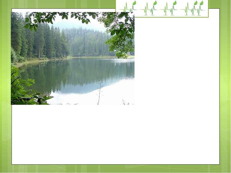"""В НПП """"Синевир"""" прокладено дві нові екологічні стежки: """"Урочище Красний — озе..."""