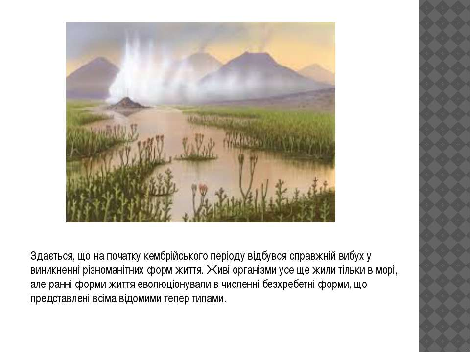 Здається, що на початку кембрійського періоду відбувся справжній вибух у вини...