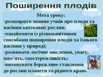 Мета уроку: розширити знання учнів про плоди та насіння квіткових рослин; озн...