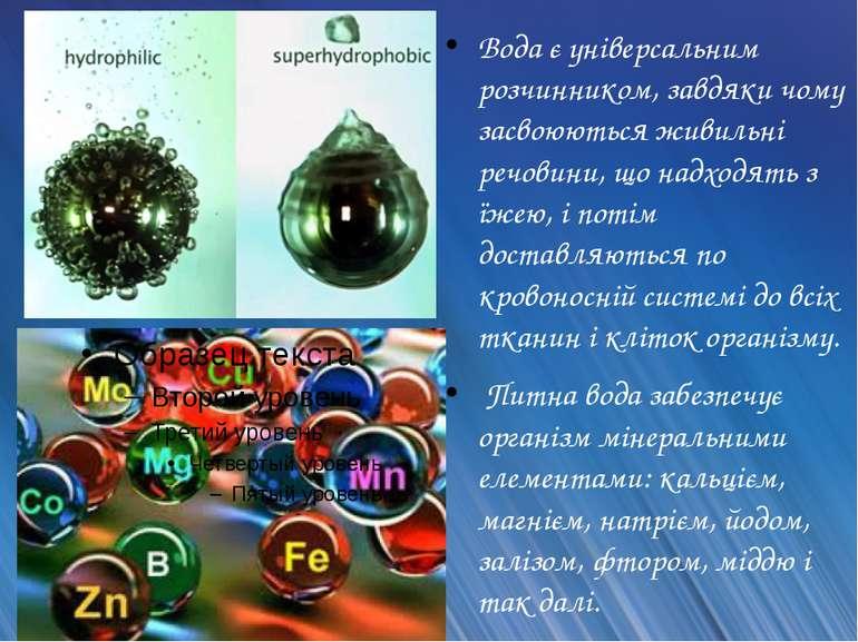 Вода є універсальним розчинником, завдяки чому засвоюються живильні речовини,...