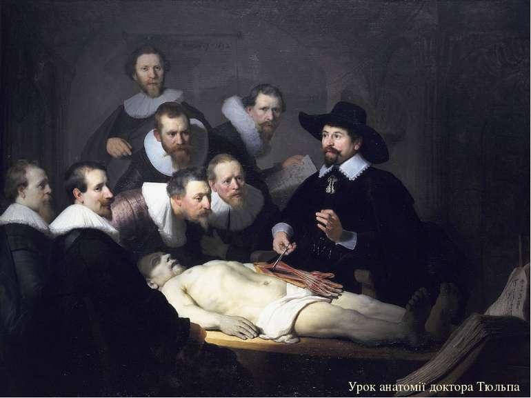 Урок анатомії доктора Тюльпа