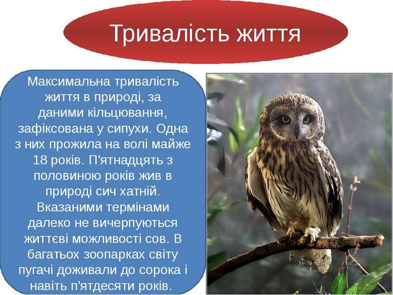 Тривалість життя Максимальна тривалість життя в природі, за данимикільцюванн...
