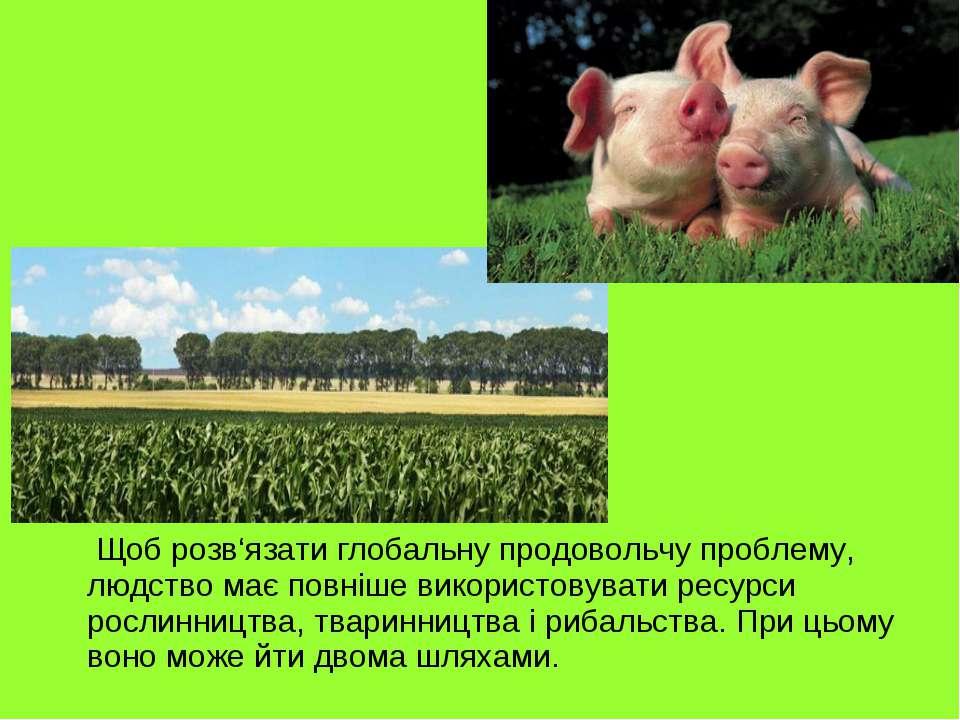 Щоб розв'язати глобальну продовольчу проблему, людство має повніше використов...