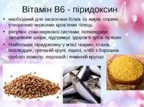 Вітамін В6 - піридоксин необхідний для засвоєння білків та жирів, сприяє утво...
