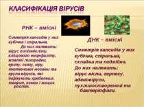 РНК – вмісні Симетрія капсидів у них кубічна і спіральна. До них належать: ві...