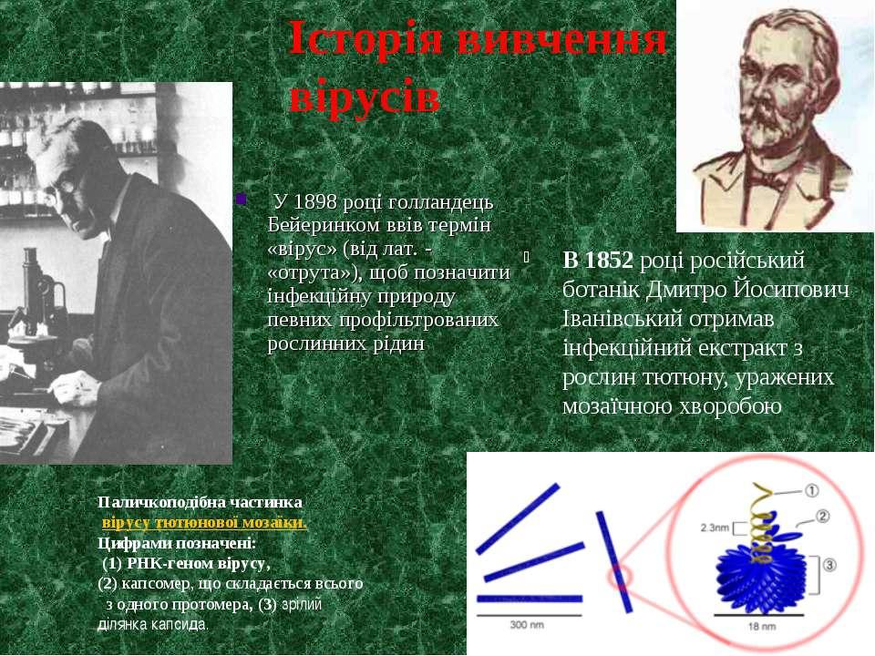 В 1852 році російський ботанік Дмитро Йосипович Іванівський отримав інфекційн...