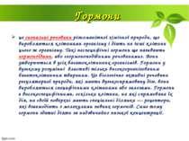 Гормони це сигнальні речовини різноманітної хімічної природи, що виробляються...