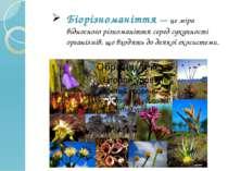 Біорізноманіття — це міра відносного різноманіття серед сукупності організмів...