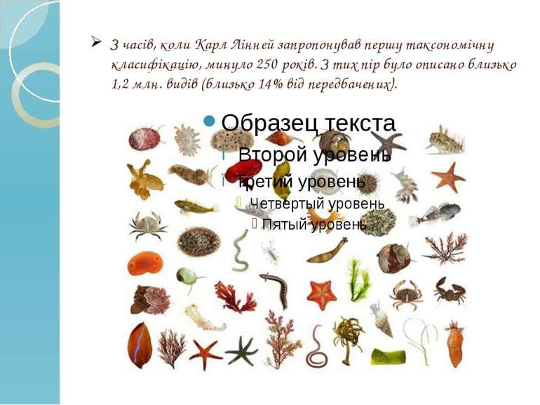 З часів, коли Карл Лінней запропонував першу таксономічну класифікацію, минул...