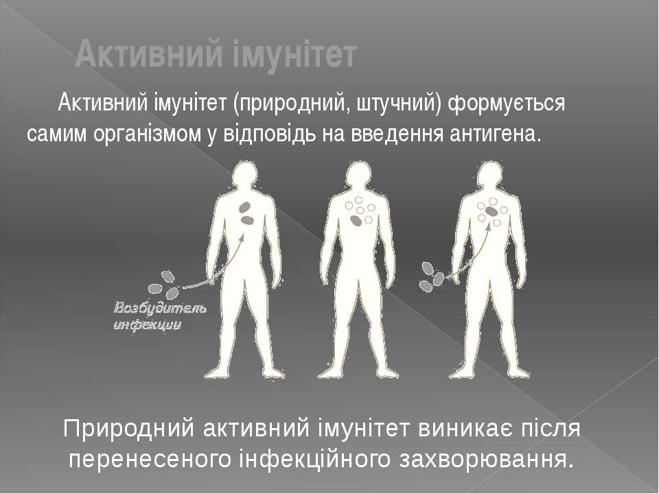 Активний імунітет (природний, штучний) формується самим організмом у відповід...