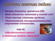 Велика кількість хромосом (46) Мала кількість потомків у кожній сім'ї Пізно н...