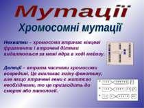 Нехватки – хромосома втрачає кінцеві фрагменти і втрачені ділянки видаляються...