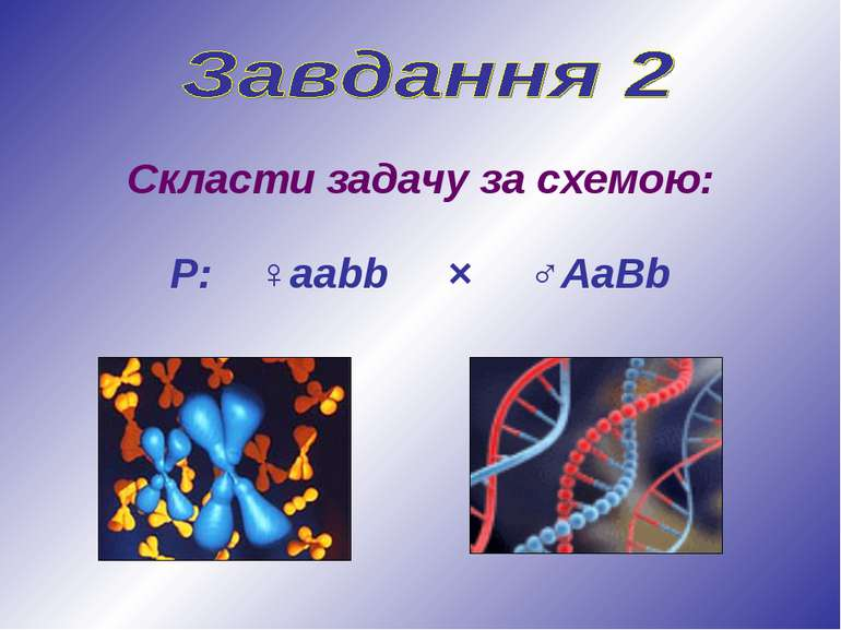 Скласти задачу за схемою: Р: ♀ааbb × ♂АaBb