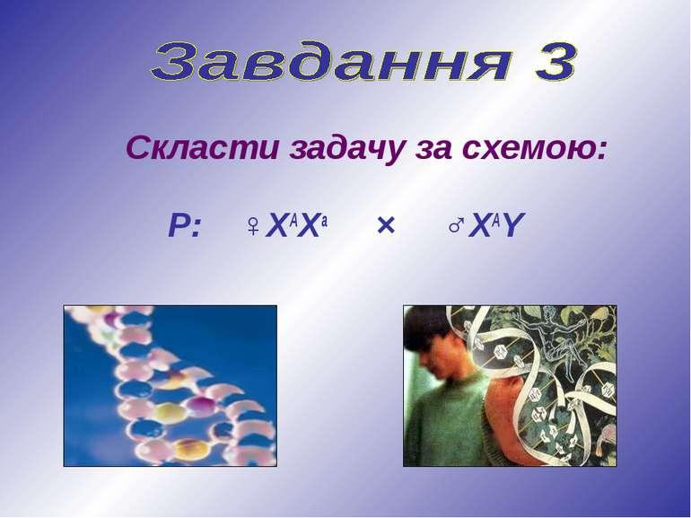Скласти задачу за схемою: Р: ♀ХАХа × ♂ХАY