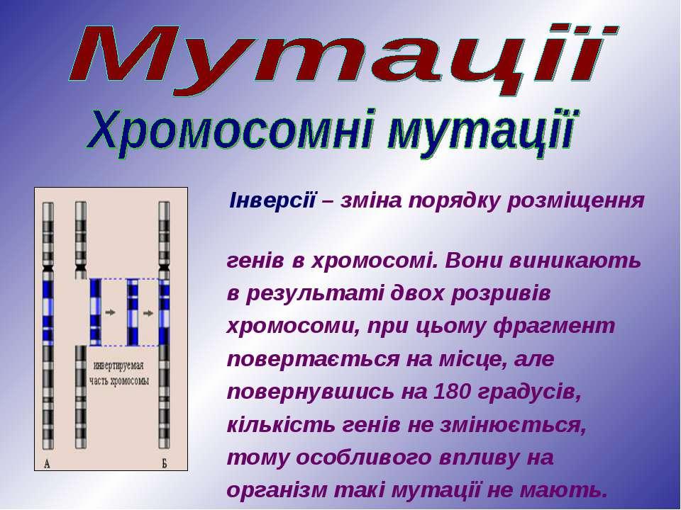 Інверсії – зміна порядку розміщення генів в хромосомі. Вони виникають в резул...