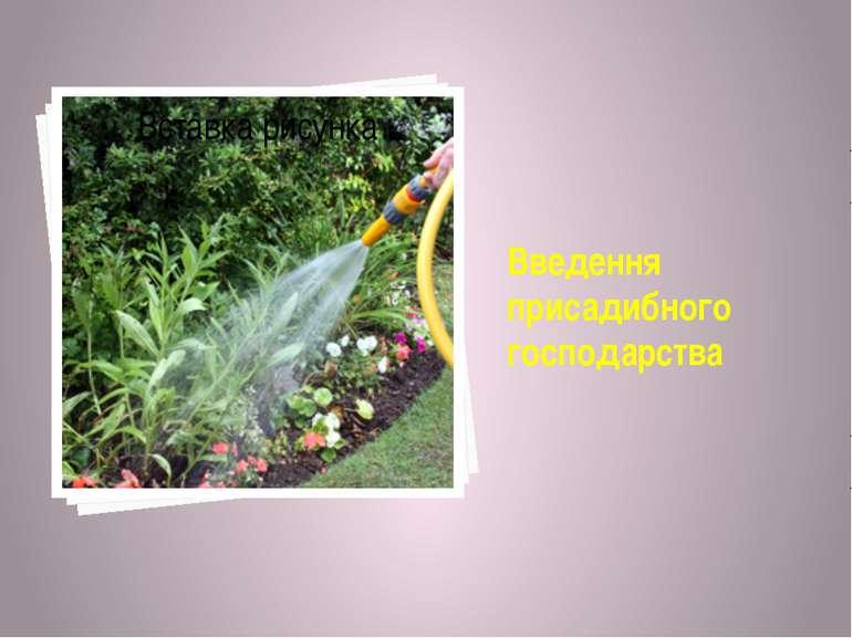 Введення присадибного господарства
